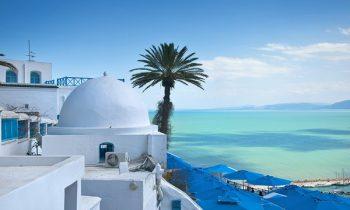 Вид на Тунис