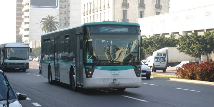Городские автобусы Энфиды