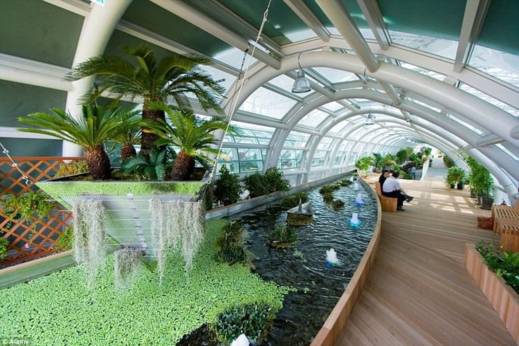 Зимний сад в аэропорту Инчхон